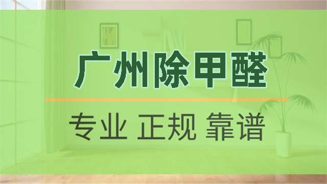 广州除甲醛